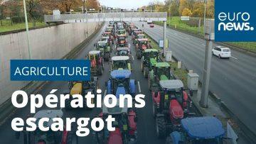 Les agriculteurs en détresse bloquent Paris : les raisons