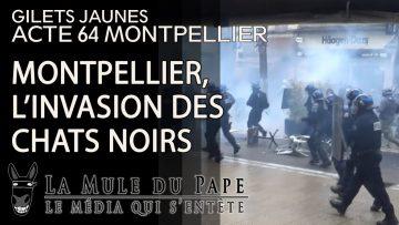 Gilets Jaunes Acte 64 – Montpellier, l'invasion des chats noirs (Part I)