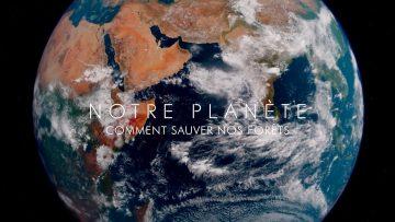 Notre Planète : comment sauver nos forêts ?