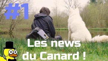 LE COIN DU CANARD #1 : Site web, journal et confinement