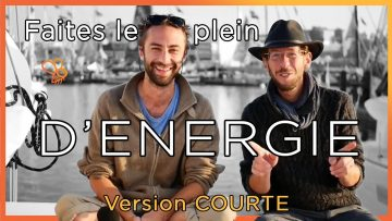 MicroFaune #12 🐝 Les Vagabonds de l'Energie