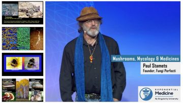 Paul Stamets: Mycology and Mushrooms as Medicines (anglais)