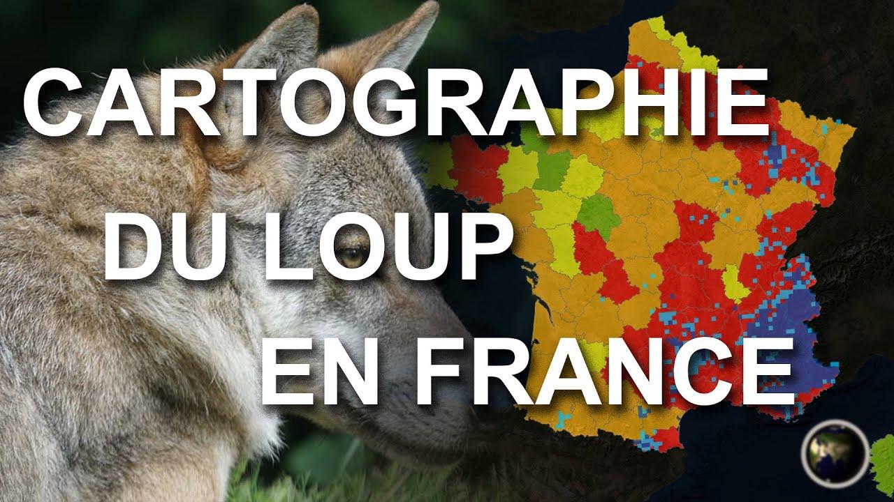 CARTOGRAPHIE DU LOUP EN FRANCE