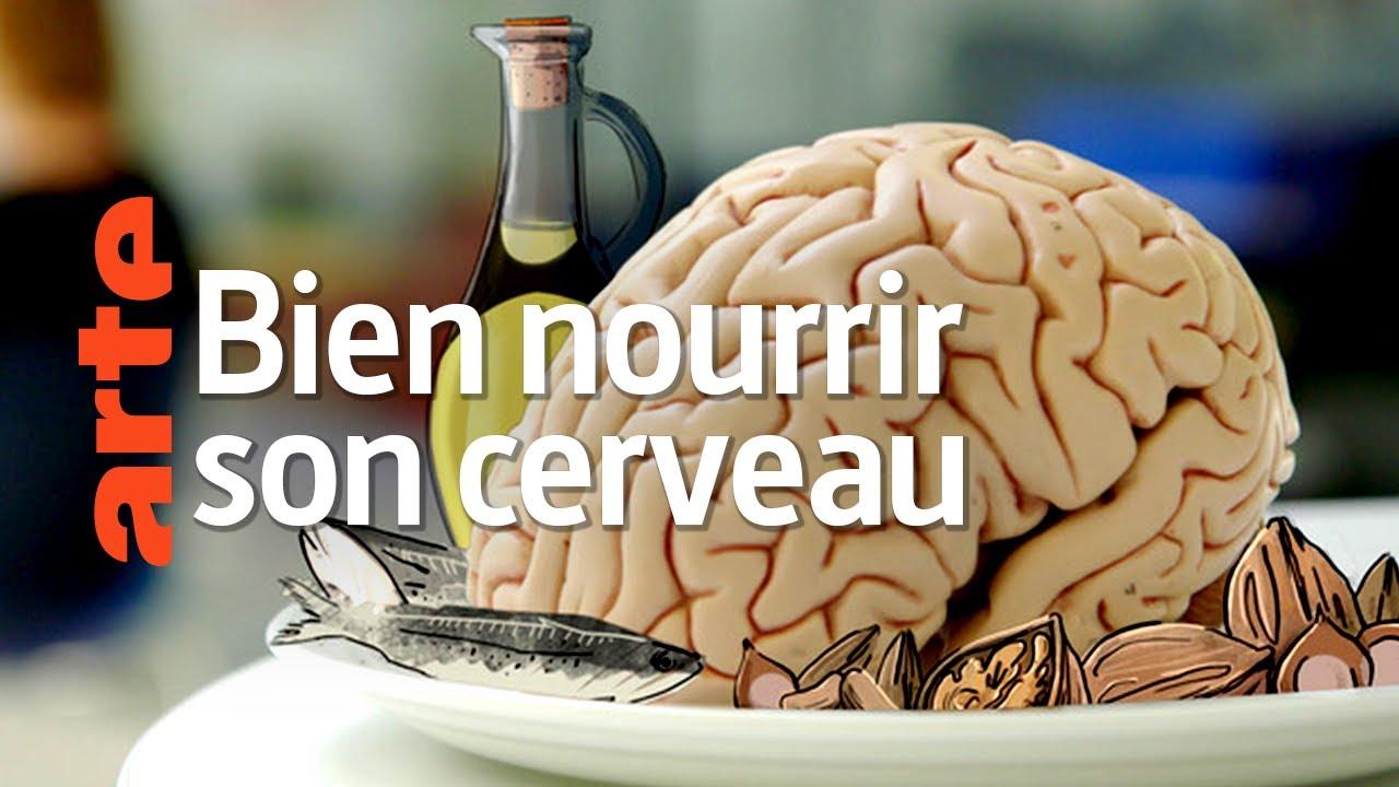 Comment notre alimentation influence notre santé mentale | Bien nourrir son cerveau