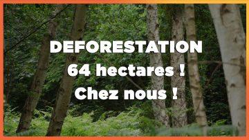 """Ici s'arrête la déforestation!"""