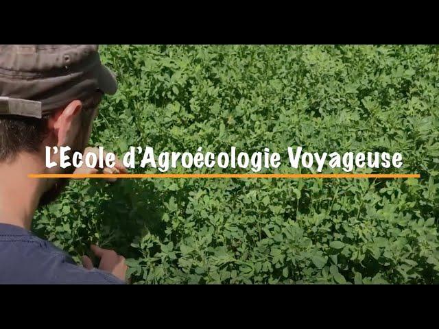 🌱 Soutenez L'Ecole d'Agroécologie Voyageuse 🌱