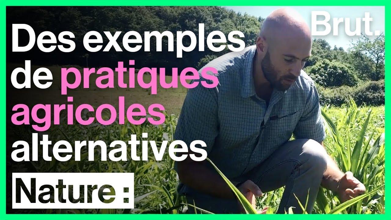 Félix Noblia teste des pratiques agricoles alternatives