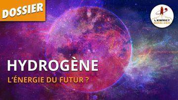 HYDROGÈNE : L'ÉNERGIE DU FUTUR ?