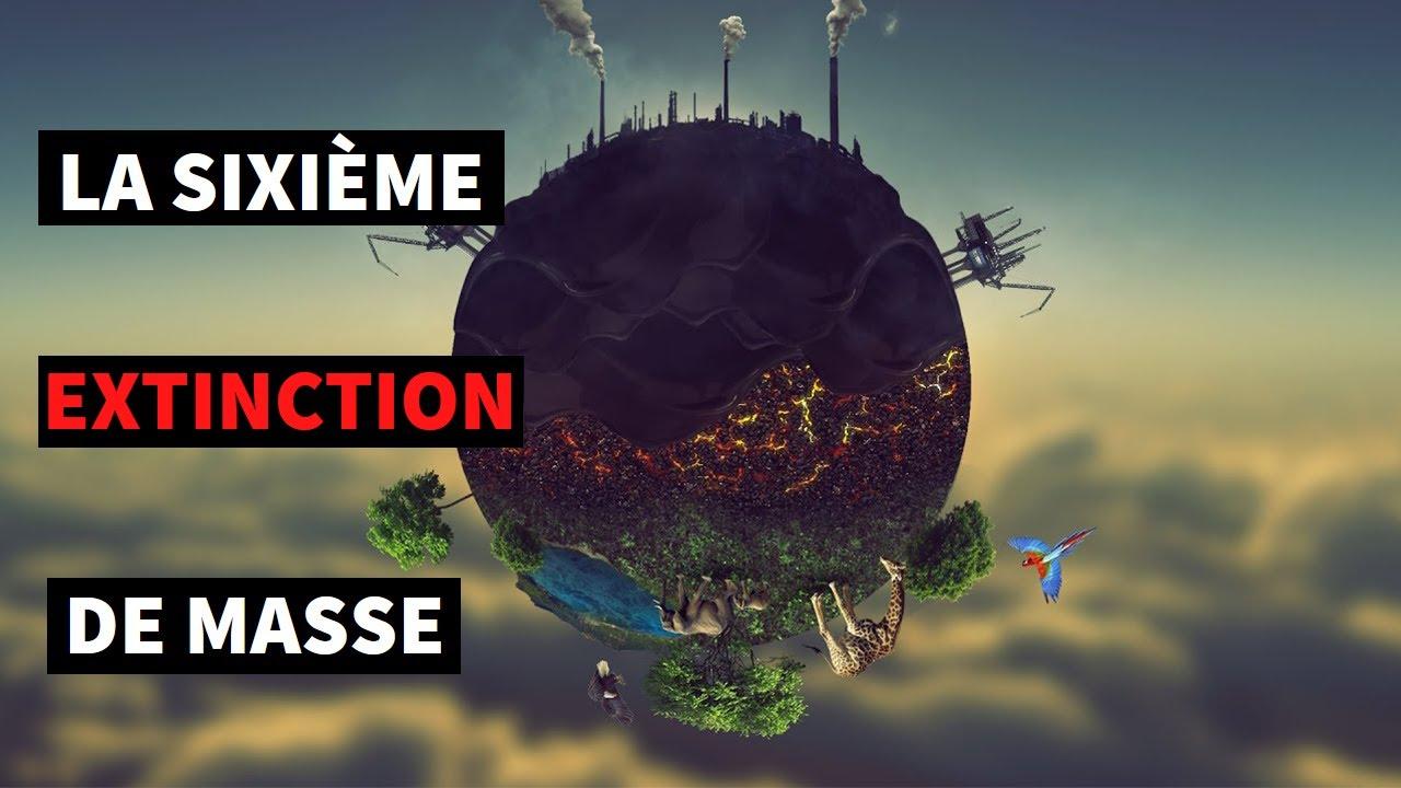 LA SIXIÈME EXTINCTION DE MASSE