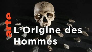 Le passé des Hommes | Homo sapiens, les nouvelles origines
