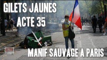 acte-35-manif-sauvage-a-paris