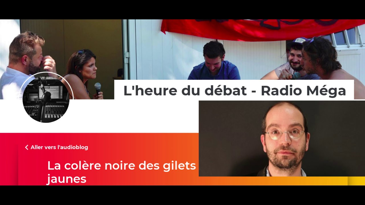 """Analyse politique de Raul Magni-Berton sur les """"Gilets Jaunes"""" et le RIC"""
