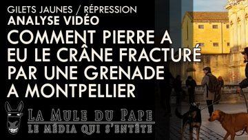 comment-pierre-a-vu-son-crane-fr