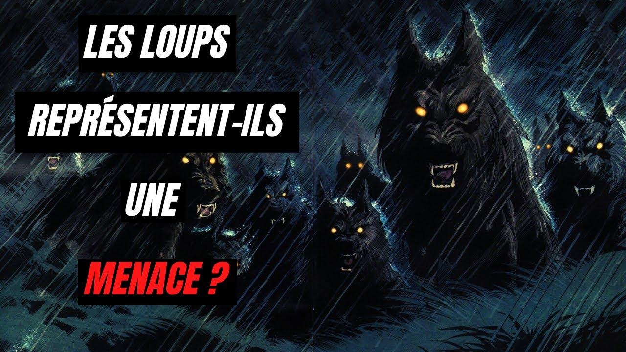 decologie-3-les-loups-represente