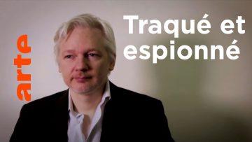 julian-assange-revelations-despi