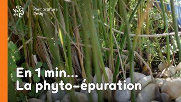 la-minute-permaculture-cest-quoi