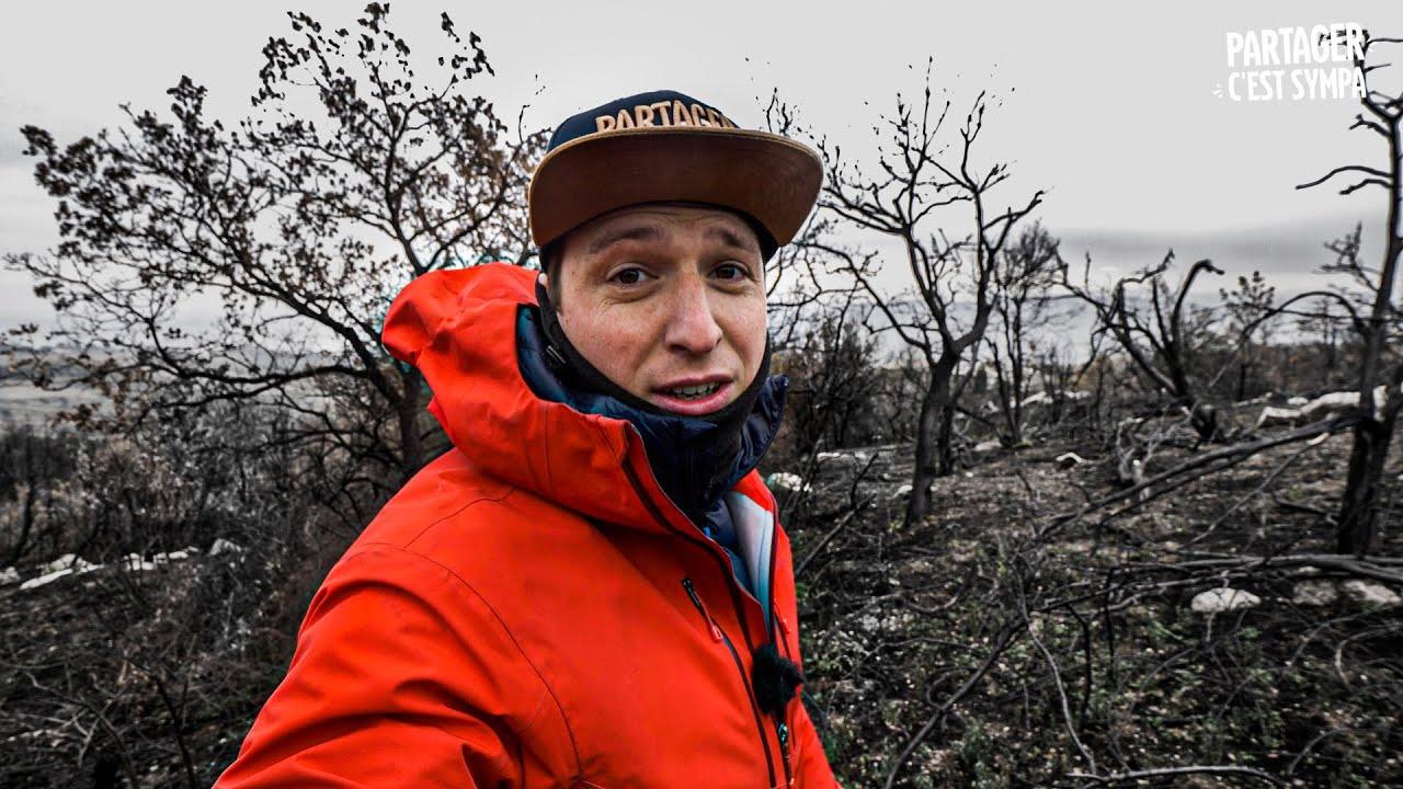 Ma Forêt a Brûlé : Une loi pour ralentir l'incendie
