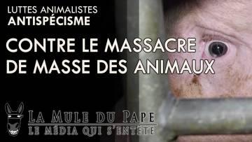 Antispécisme, contre le massacre de masse des animaux