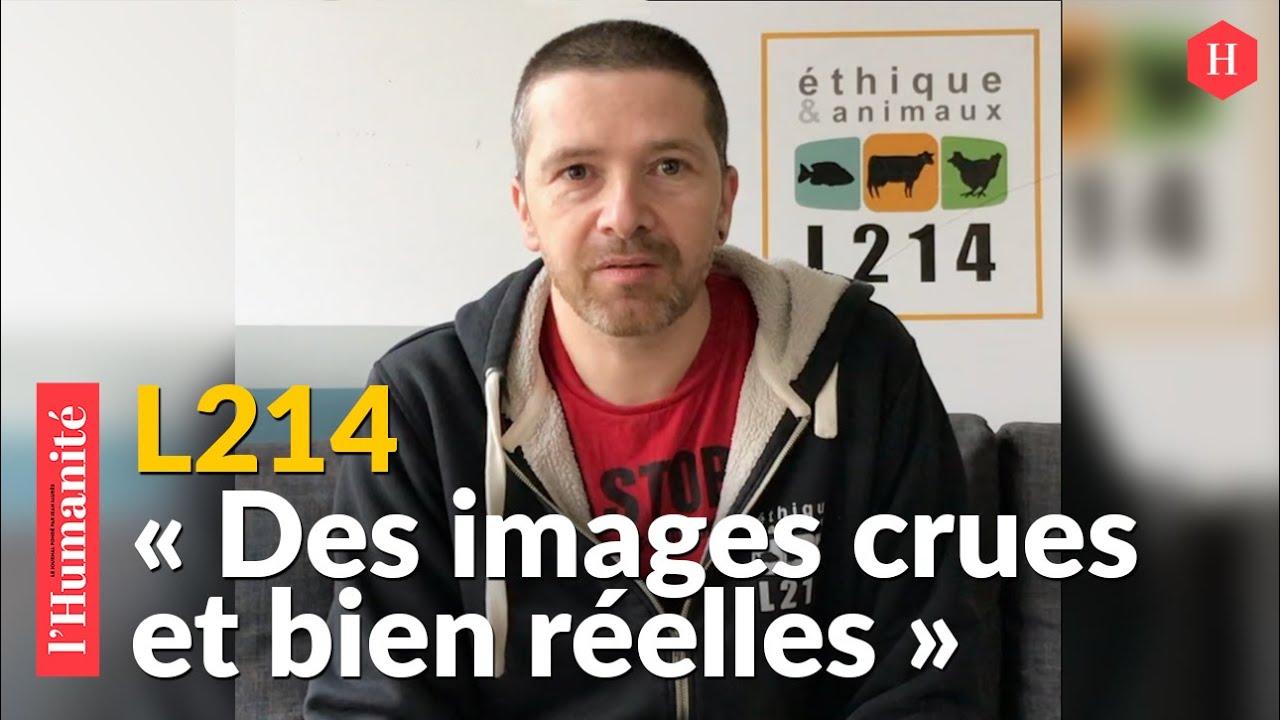 """L214. Sébastien Arsac : """"En luttant contre l'élevage intensif, on agit pour le bien-être général"""""""