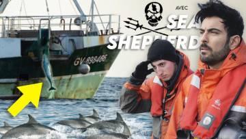 IMMERSION EN MISSION 🐬💥 avec @Sea Shepherd France – Officiel & @Demos Kratos – Partie 2/2