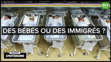 Interdit d'interdire – Des bébés ou des immigrés ?