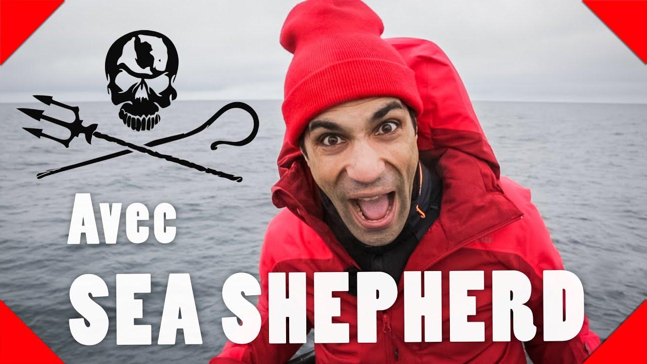 AMI DES LOBBIES  – Avec Sea Shepherd